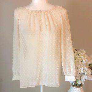 🌷 J. Crew sheer blouse